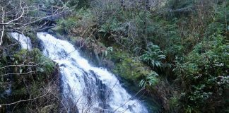 Day trip Waterfalls Olympic Peninsula-Cascade-Falls