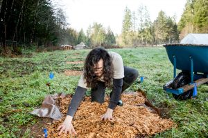 Evergreen College Paths of Study Fungal-Kingdom-Morel-Cultivation