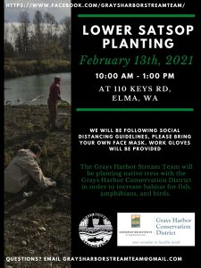 Lower Satsop Planting