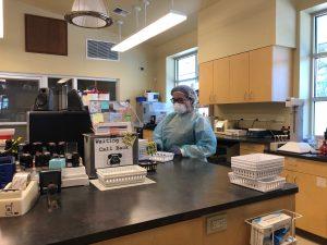 NW-Remedies-Lab
