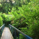 Day Trip Grays Harbor Hikes Elton-Bennett-Trail-bridge-Hoquiam