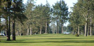 Ocean-Shores-Golf-Course-green-with-trees