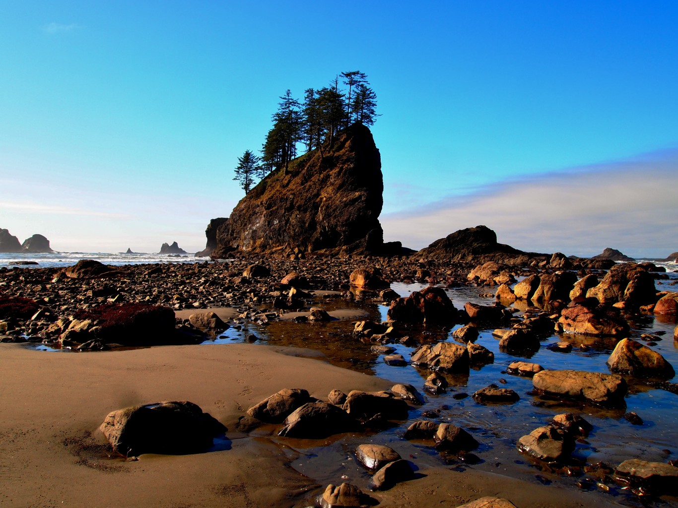 Tide Pools Beach