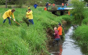 Alder Creek Clean Up @ Alder Creek | Aberdeen | Washington | United States