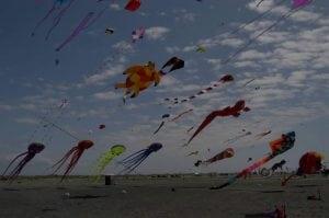 Windrider Kite Festival @ Grayland Beach | Grayland | Washington | United States