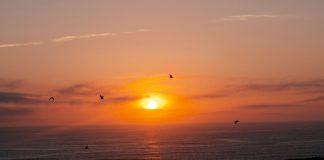 Grays Harbor North Beaches sunset northern beach
