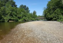 Twin Bridges Park Along the Wynoochee River