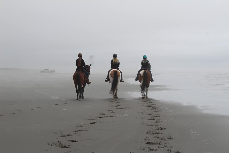 Where to Camp with Horses Grays Harbor Ocean Shores