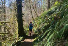 running trails grays Harbor