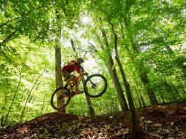 Mountain Bike trails in Montesano