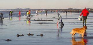 2020 Razor Clam Festival Ocean Shores clam dig