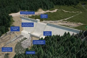 Public Comments on Proposed Chehalis Dam @ webex call-in