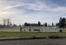 Aberdeen-Dog-Park-Garley-Park-large-dog-section