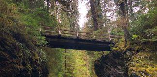 Day Trip Grays Harbor Bridges Pony-Bridge-Quinault