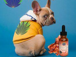 Sweet-Life-CBD-pets-dog-cat-