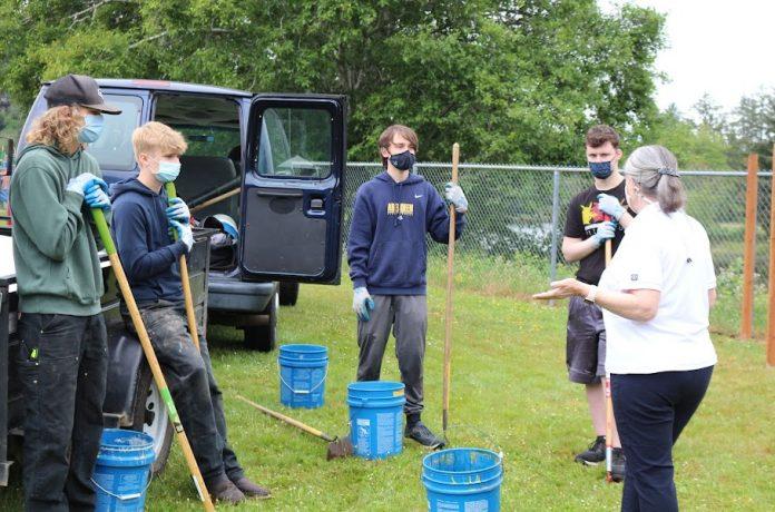 Aberdeen-School-Garden-Master-Gardeners